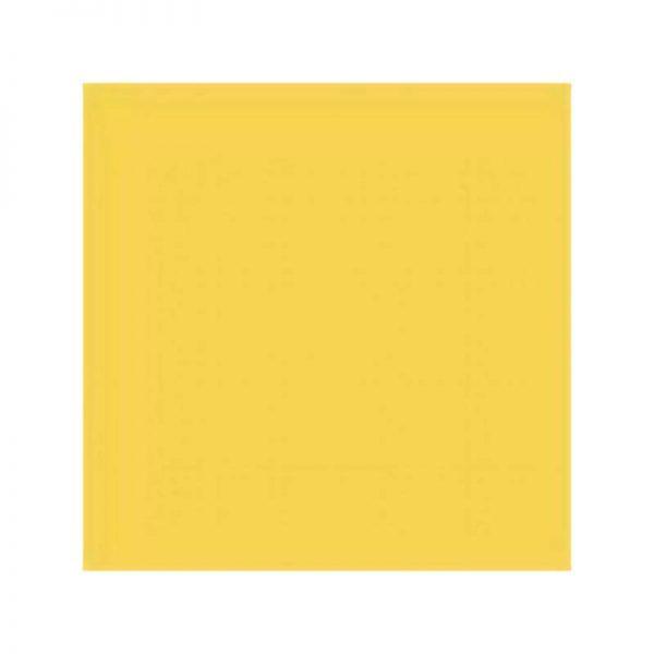 EVUS pintura Vinilo liquido RAL 1018 Color Amarillo